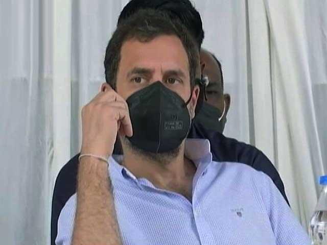 कांग्रेस-बीजेपी के बीच 'मुहावरा वार', राहुल गांधी की 'गुगली' पर प्रकाश जावडेकर ने यूं लगाया 'जवाबी शॉट'
